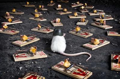 5 Cara Unik Untuk Mengusir Tikus di Rumah