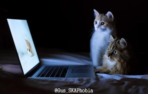 Laptop Bekas / Second