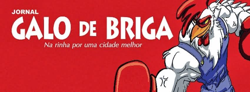 Galo de Briga