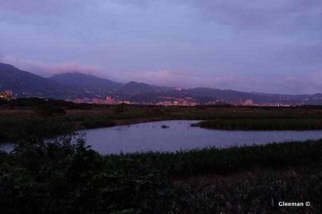 自然公園的美麗的黃昏。