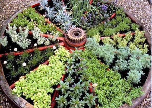 Wagon Wheel Herb Garden Up Close, Photo Origin Unknown