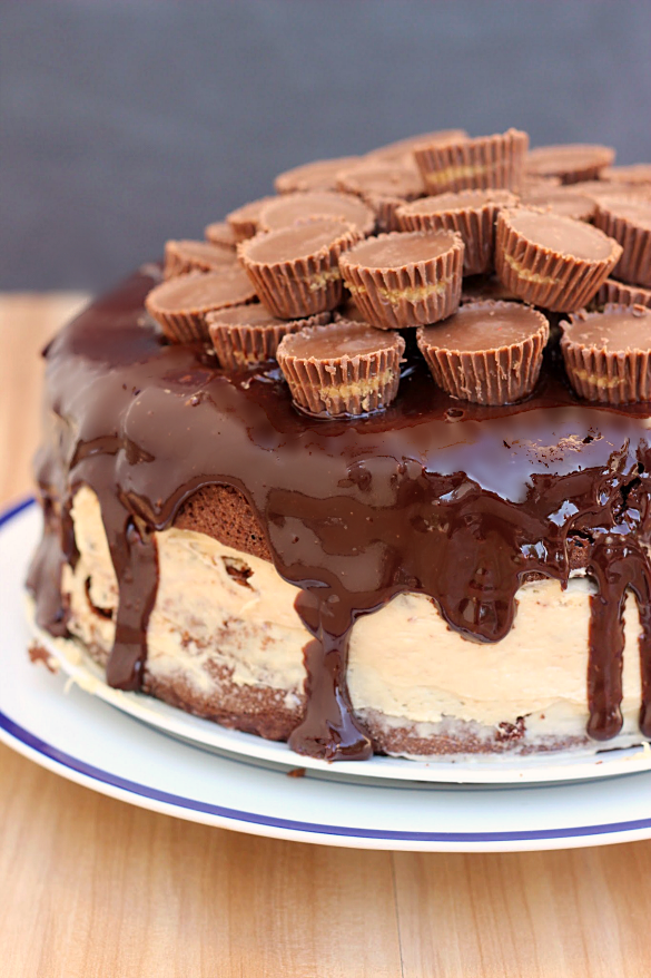 Chocolate Peanut Butter Pie Cake - Whats Cooking Love?