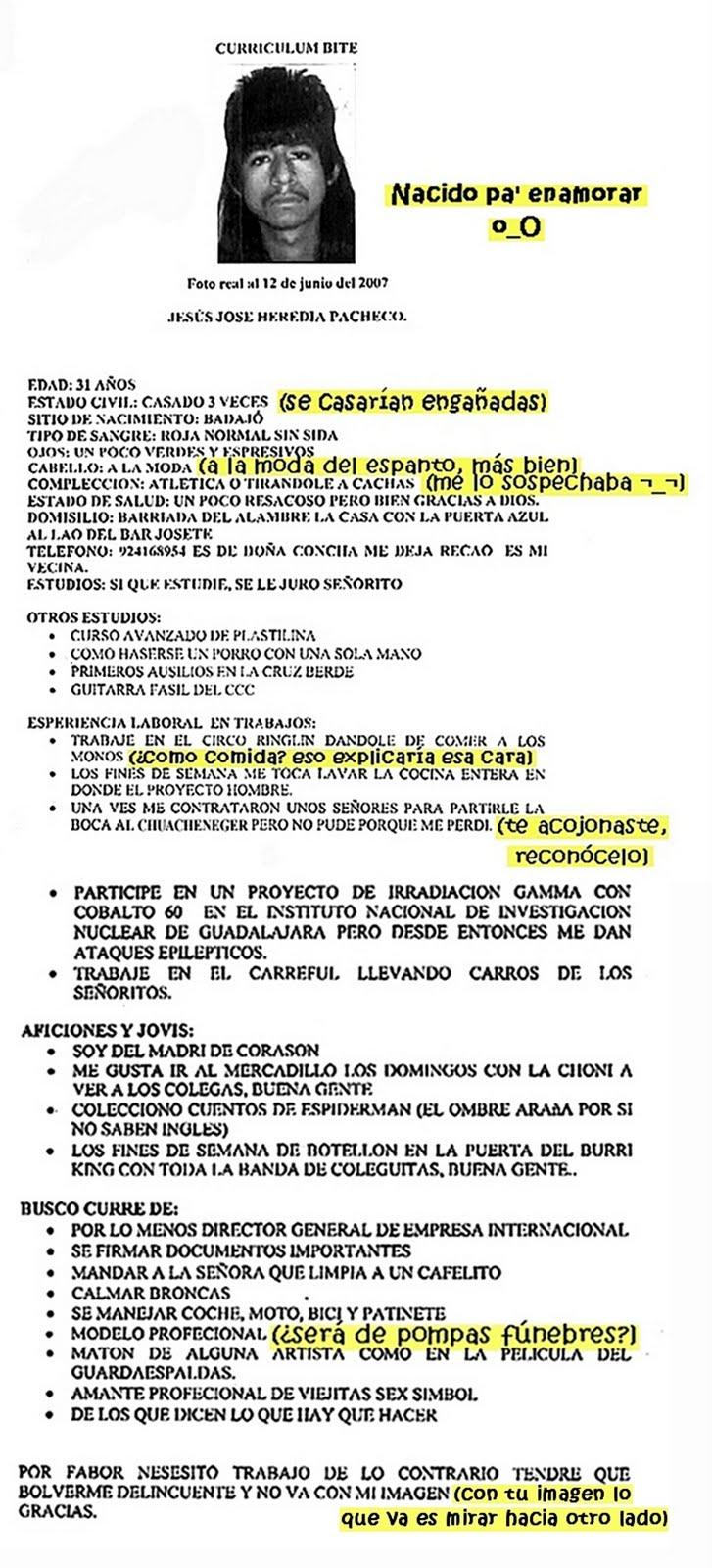 Hermosa Curriculum Del Artista Bosquejo - Colección De Plantillas De ...