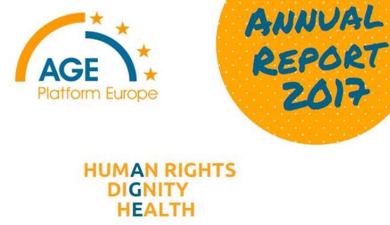 AGE - Relatório anual 2017