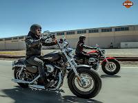 2013 Harley-Davidson XL1200C Sportster 1200 Custom pictures 2