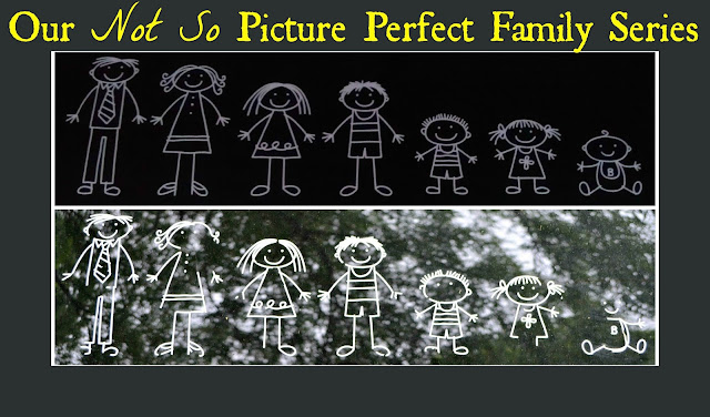 Our Not So Picture Perfect Family Series