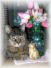 Simba My Little Peanut 1996 - 2012