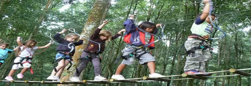 Bali Tree Top Adventure Tour