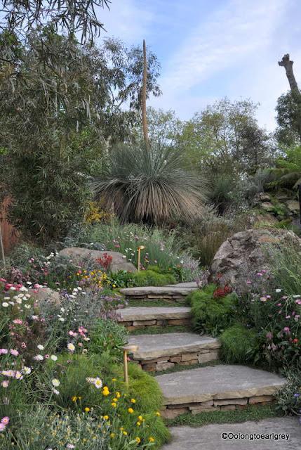 Australian winning garden