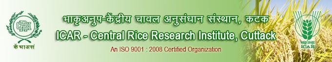 CRRI Recruitment 2015 Central Rice Research Institute Technician, Technical Asst – 69 Posts