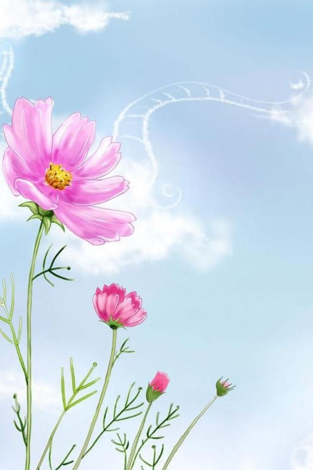 free iphone wallpapers hd cute flowers iphone wallpapers, Natural flower