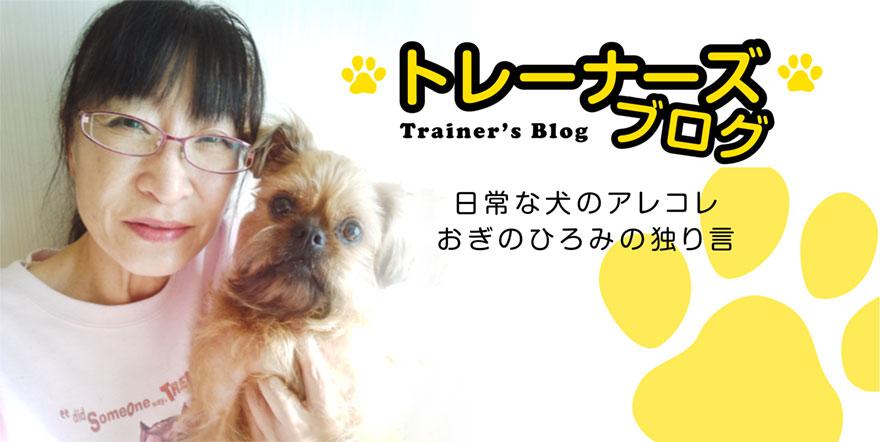 札幌の犬のしつけ ドッグトレーナーズおぎの トレーナーおぎのひろみの独り言