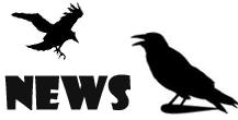 Random News | Newscrow