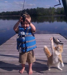 funny picture: child fishing with cat