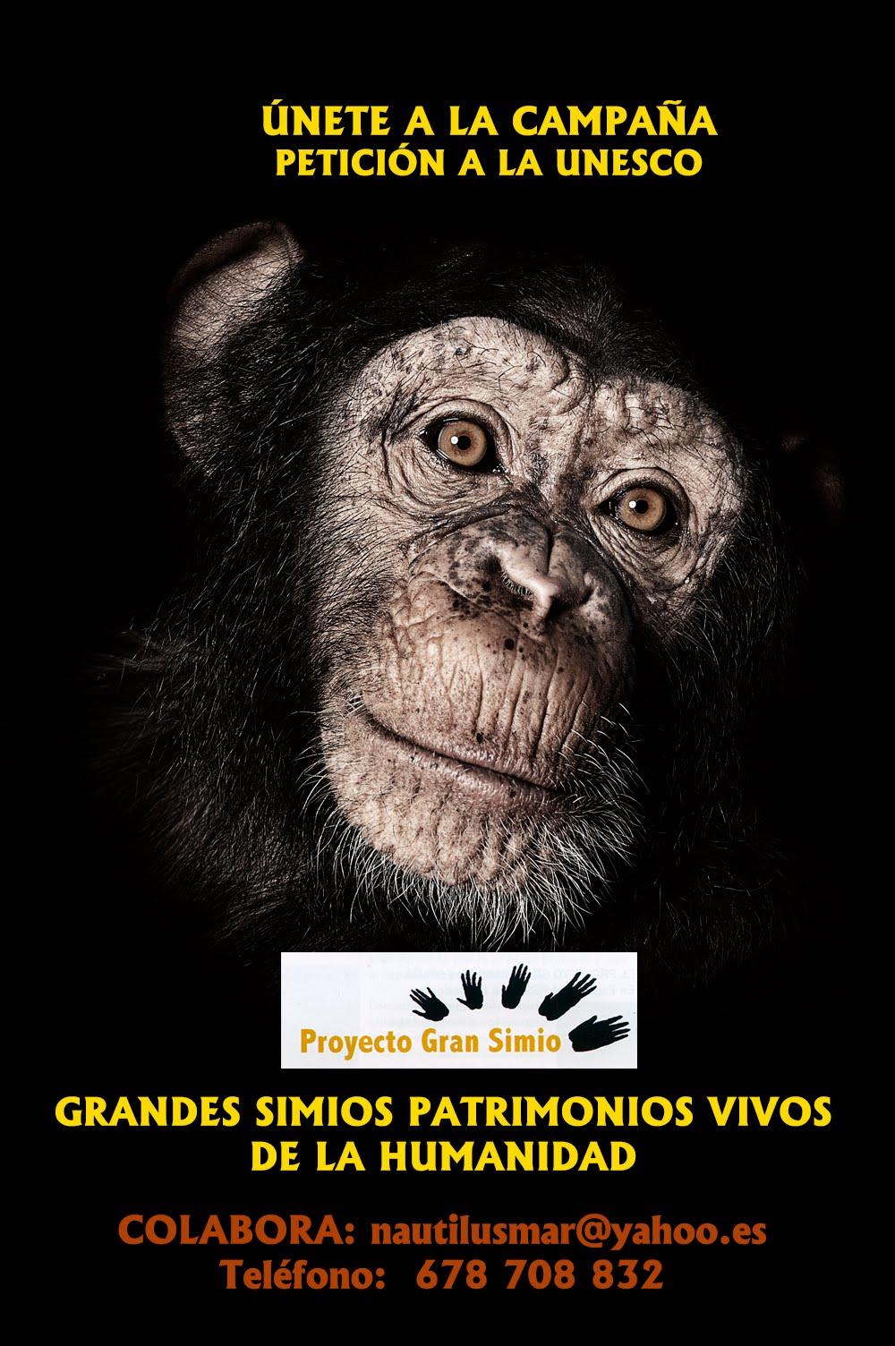 PATRIMONIOS DE LA HUMANIDAD