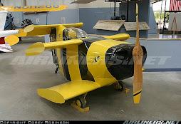 wasp-aeronautica