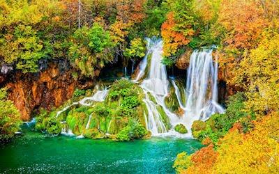 Una hermosa cascada en el bosque - Amazing waterfalls