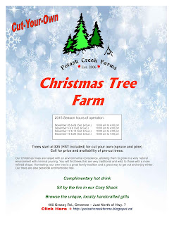 image 2015 Cut Your Own Omemee Christmas Trees - Potash Creek Farms Poster