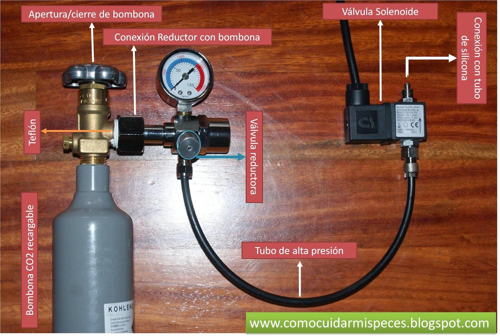 Instalaci n de co2 en el acuario con electrov lvula - Montaje de acuarios ...