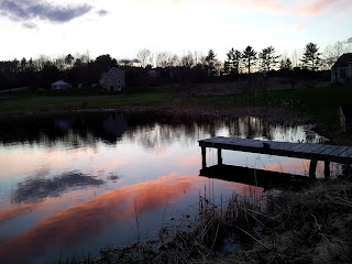 Pond at sunset