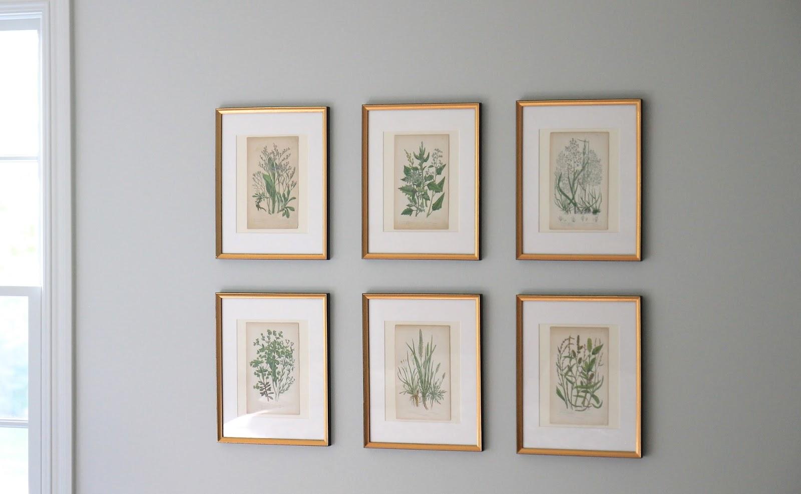 Jenny Steffens Hobick: Framing Botanicals, Antique Mirror Find ...