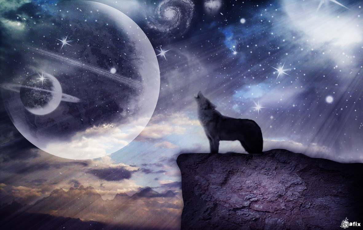 11 eyes 3d wallpapers 3d wallpaper wolf wallpaper black wolf wallpaper ...