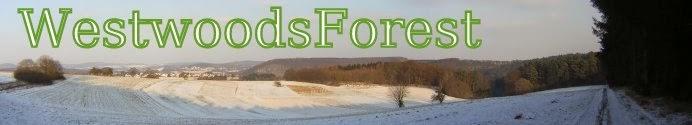WestwoodsForest