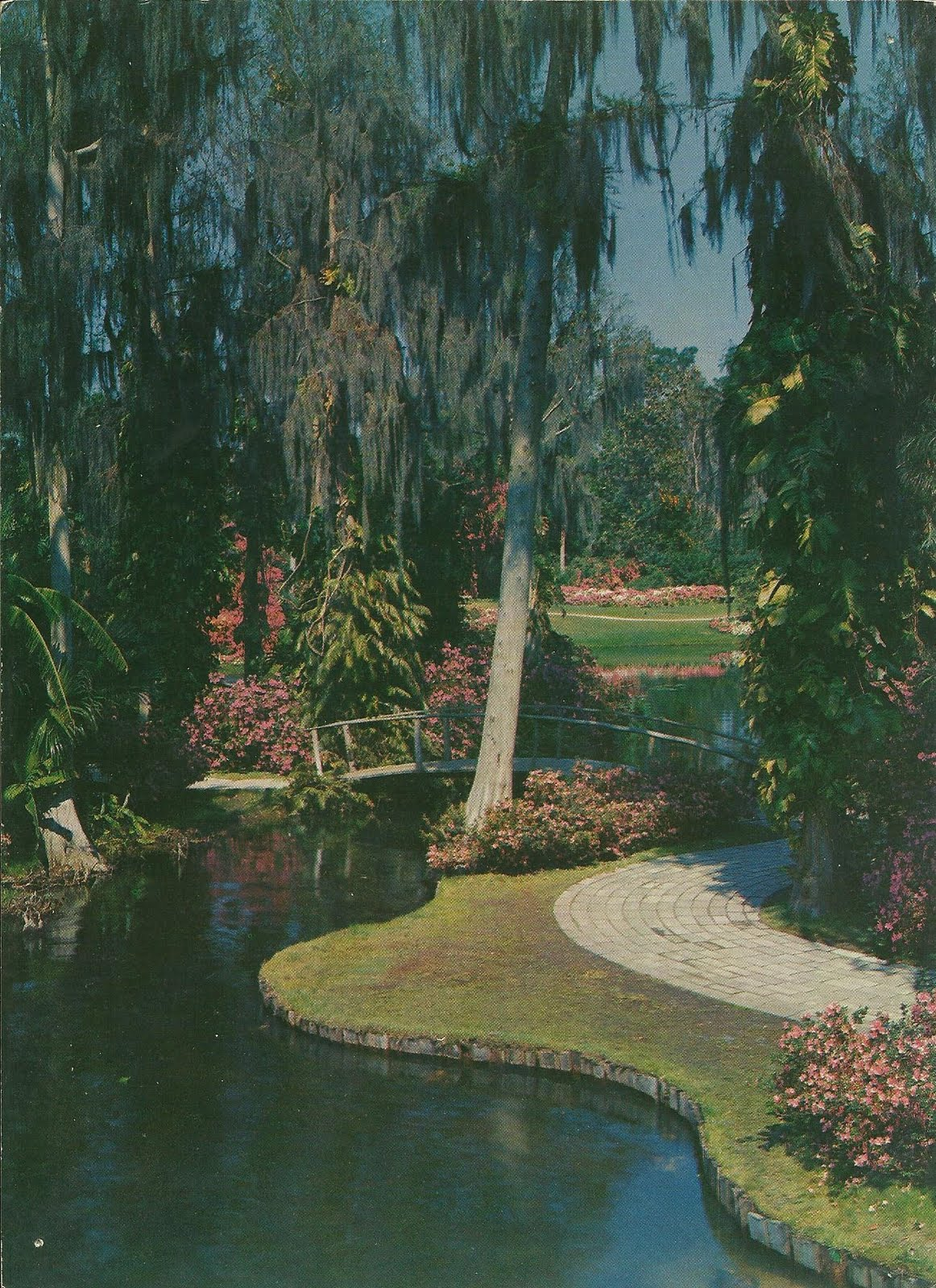 Vintage Travel Postcards: Cypress Gardens
