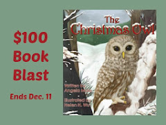 The Christmas Owl - 13 November
