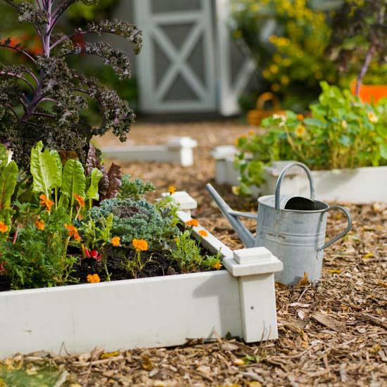 New Home Interior Design Grow a Vegetable Garden in