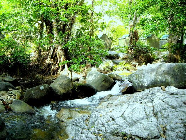 Alam Sekitar