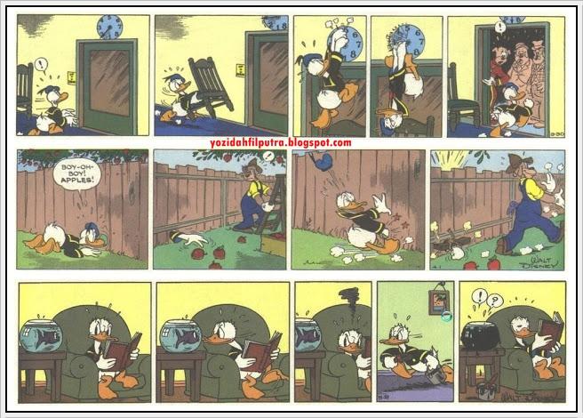 foto bebek lucu - gambar hewan - foto bebek lucu