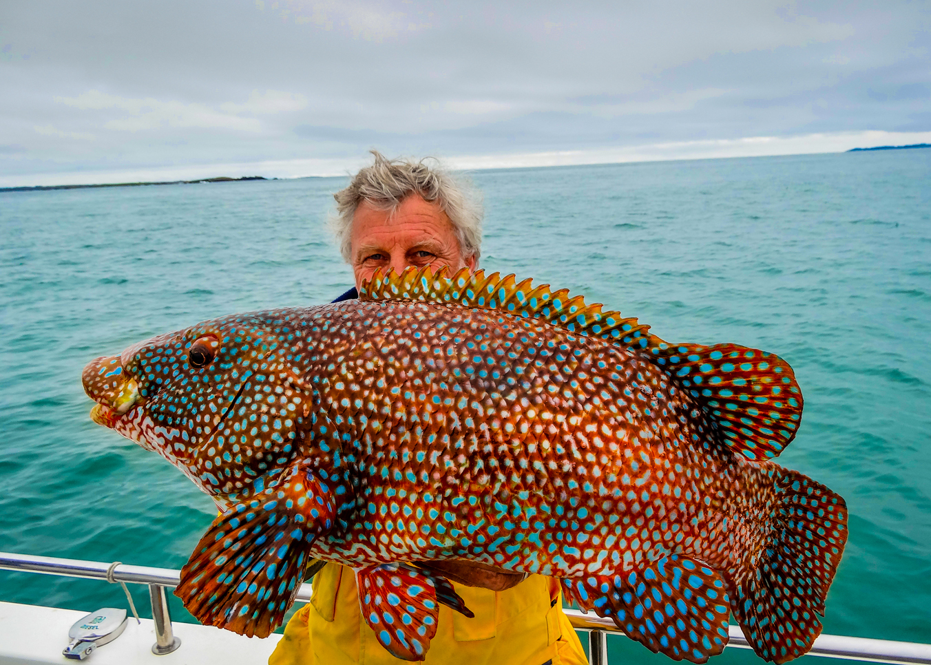 Le blog d 39 arnaud guide de p che en bretagne record surprise beaut des poisssons - Grand poisson de mer ...