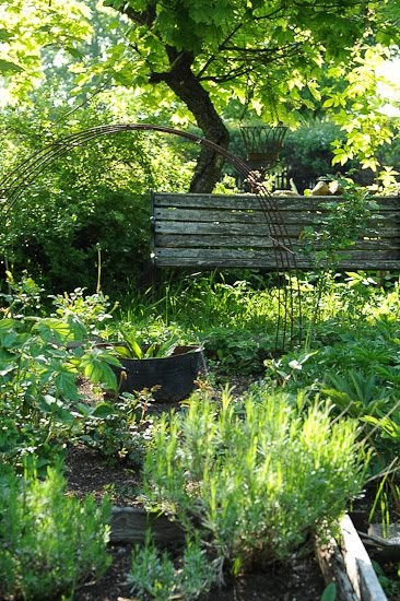 Min trädgård...
