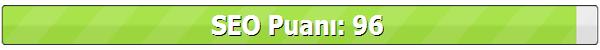 Paravan Blog Seo Puanı