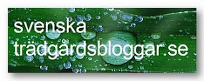 Jag är med i svenskaträdgårdsbloggar
