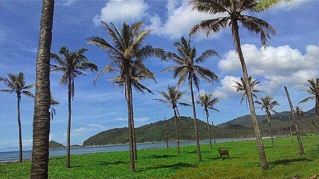 Pantai Parang Kursi terletak di sebelah Lampon, Pesanggaran, Banyuwangi.