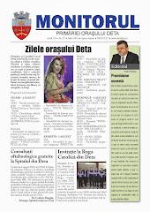 Monitorul - iulie 2013