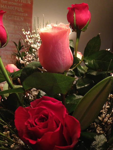Valentine's Day, red, pink, roses, leaves, greenery