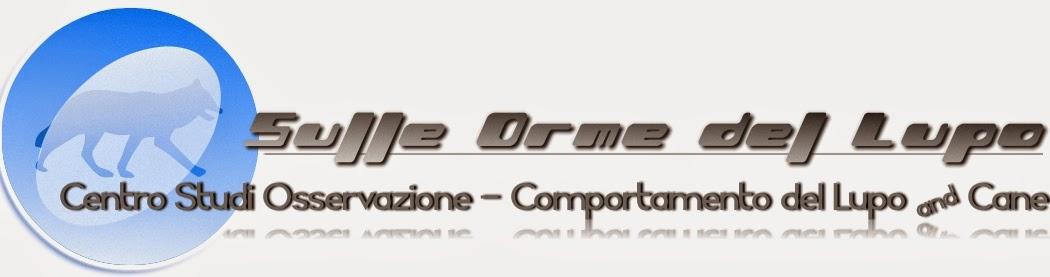 SULLE ORME del LUPO CENTRO STUDI OSSERVAZIONE - COMPORTAMENTO del LUPO  e del CANE