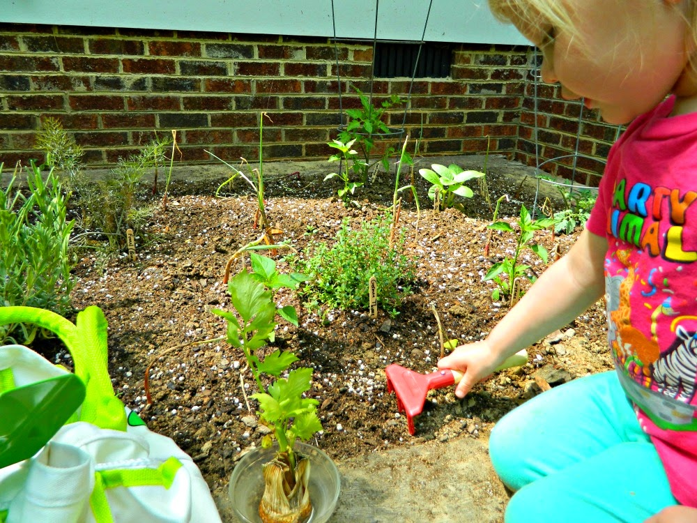 Small tools better for children to work in the garden! Find more on this great tote and tools on ChildLedLife.com