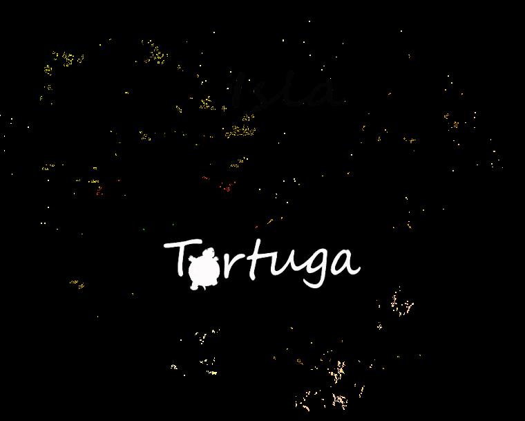 Isla Tortuga de un Anónimo Sumergido