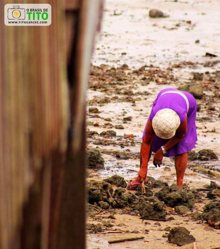 Marisqueira trabalha próximo ao porto de Marudá, em Marapanim, no Pará