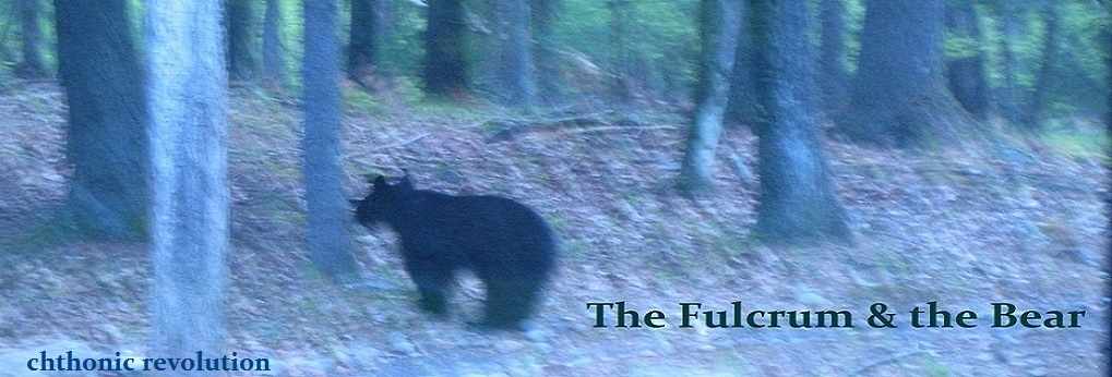 the fulcrum and the bear