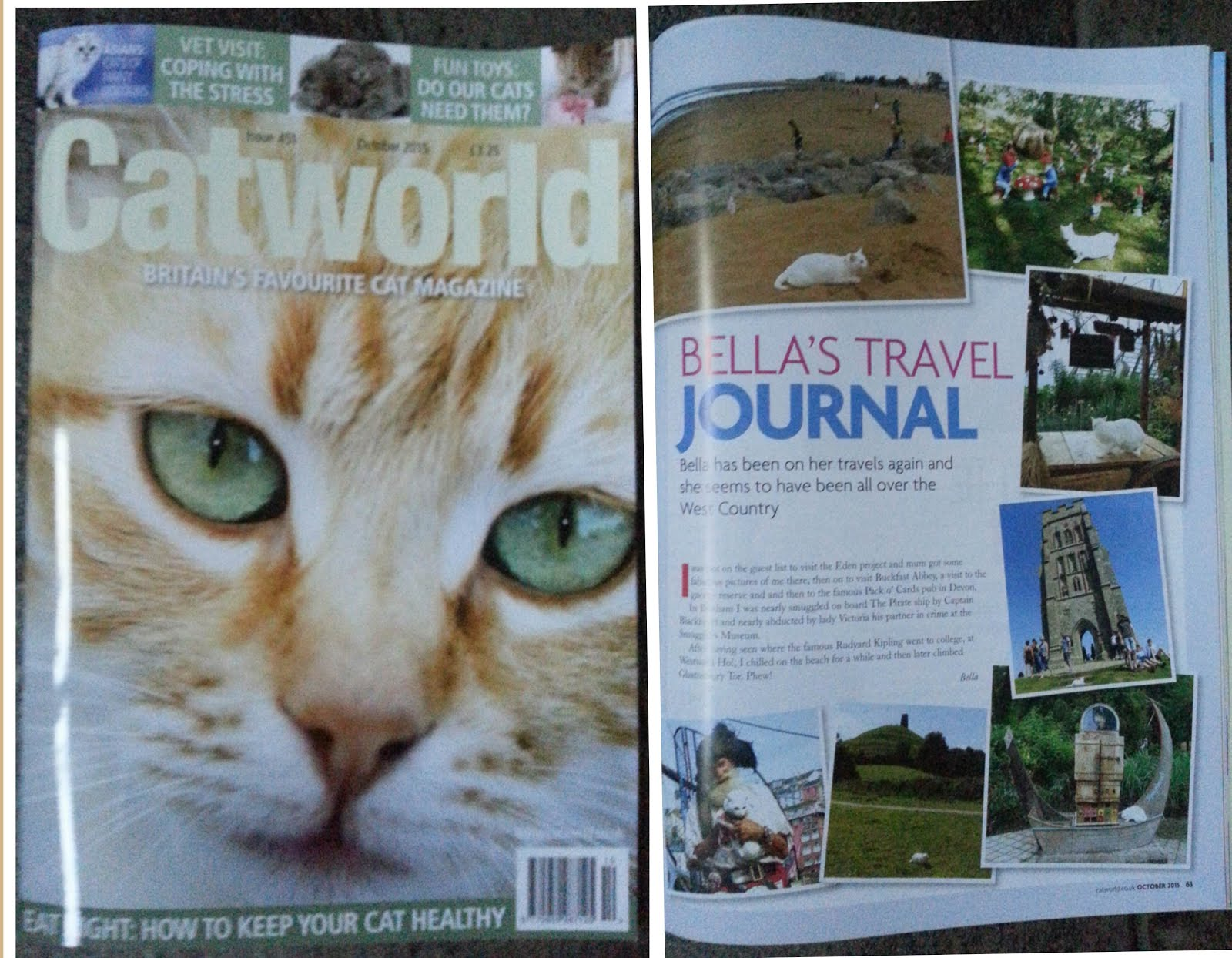 CATWORLD OCTOBER ISSUE 2015