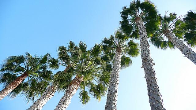 On the move: CALIFORNIA