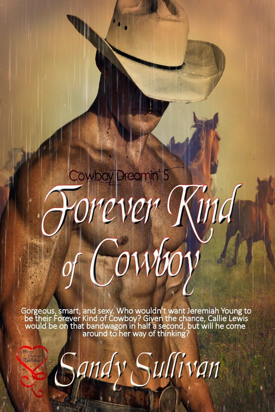 Forever Kind of Cowboy