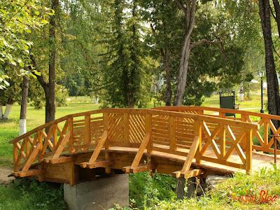 Pod de lemn