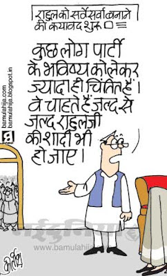 rahul gandhi cartoon, sonia gandhi cartoon, congress cartoon, indian political cartoon