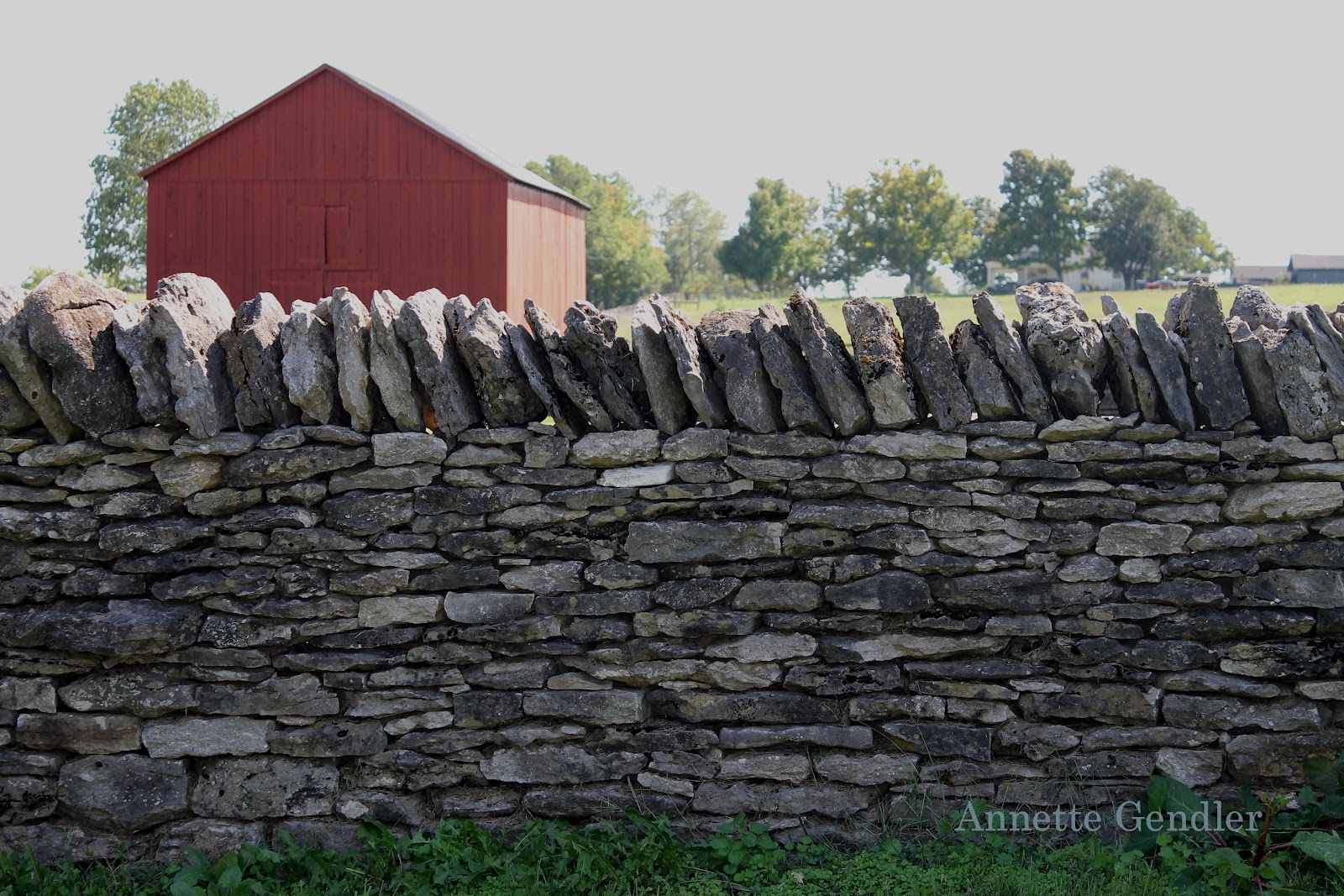 photo essay stone fences in kentucky annette gendler photo essay stone fences in kentucky